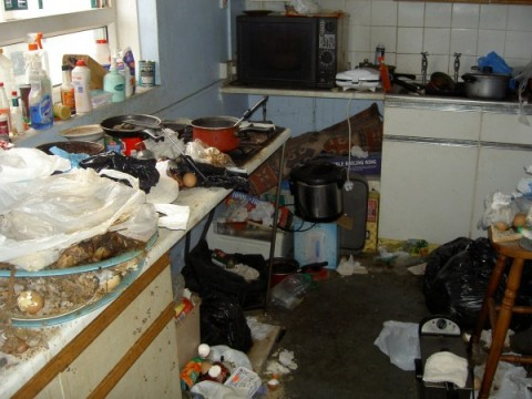 From uglyhousephotos.com Seriously keep your kitchen clean. Rot attracts roaches, vermin and other unpleasantries.