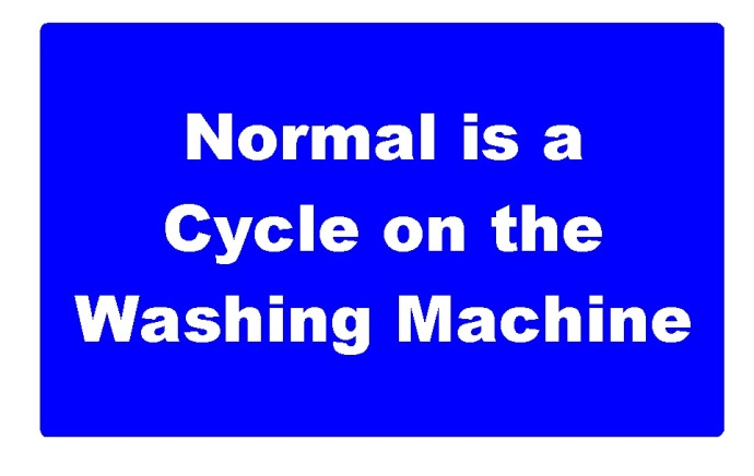 """There is no such thing as """"Normal""""."""
