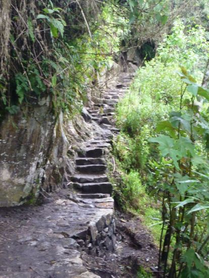 Stairs to Machu Picchu. Never again.