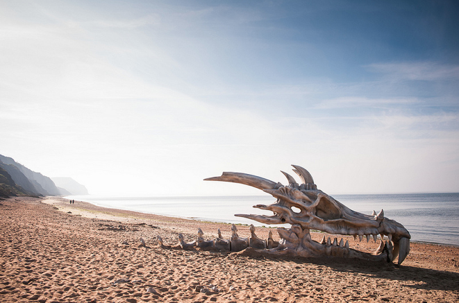 beachgoers-were-surprised-to-find-a-bus-sized-giant-skull-wash-up-on-dorsets-jurassic-coast
