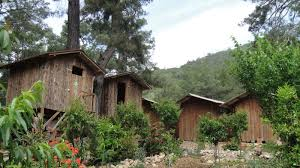 "The ""treehouses"" of Olympos."