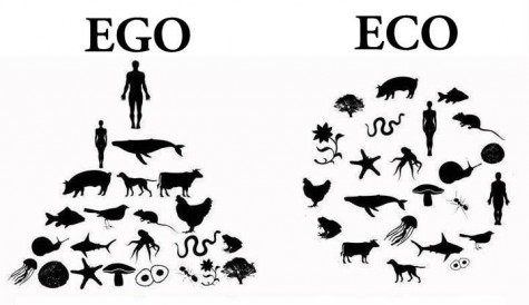 ego-eco-348353-475-274