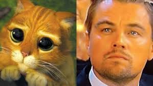 Poor Leo, always a nominee, never a winner. Chin up Dude, you're in good company which includes Peter O'Toole, Richard Burton and Barbara Stanwyck.