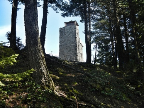 The lookout tower at the very top.
