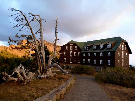 Crater Lake Lodge and one of the wind-bent trees there