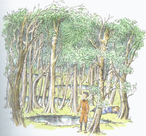 "Digory Kirke in the Wood Between the Worlds, in C.S Lewis' ""The Magician's Nephew"