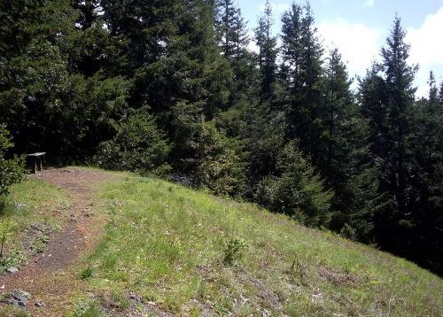 Top of Humbug Mountain meadow.